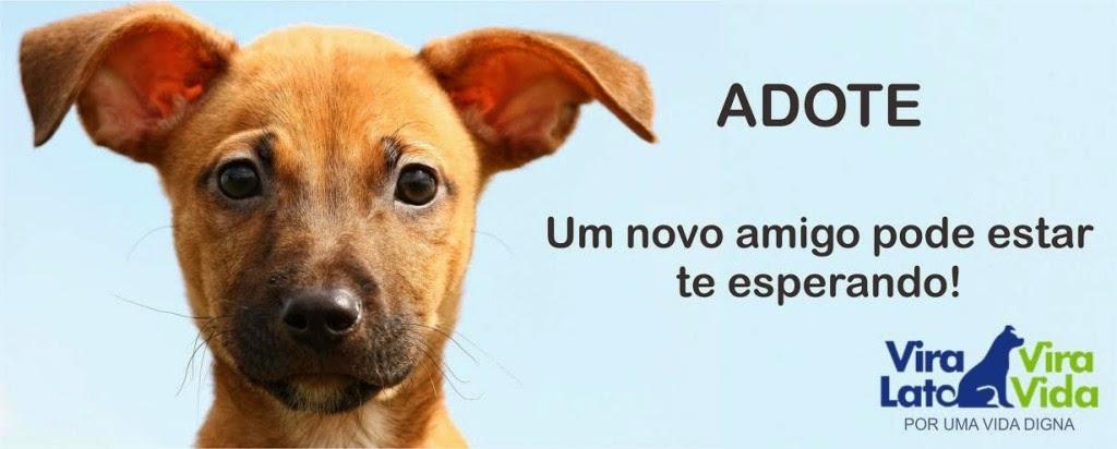 #AdoteEssaIdeia