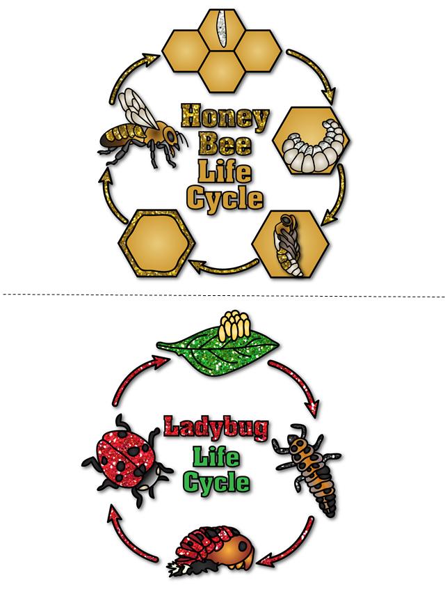 http://www.teacherspayteachers.com/Product/My-Science-Journal-Bugs-1211509