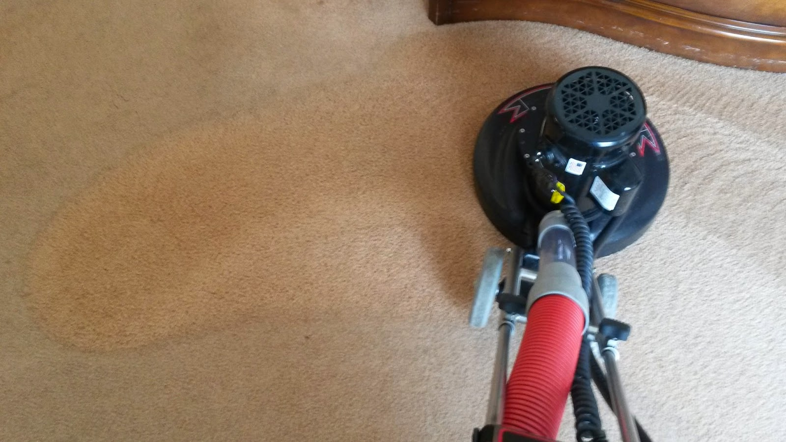 Manalapan carpet cleaning in manalapan nj new rotovac carpet carpet cleaning manalapan nj services wow dont waste money on just any cleaner until you see the new rotovac xl 360 plow through the toughest dirtiest sciox Gallery