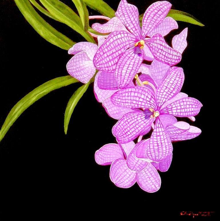 galeria-de-flores-orquideas-pintadas-en-realismo