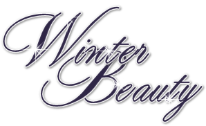 Winter Beauty Word Art Snag