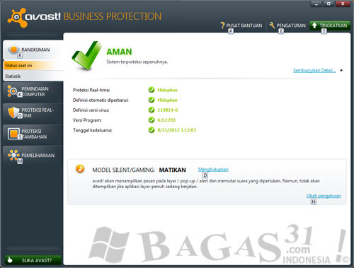 Avast! Business Protection 6.0 + License 2