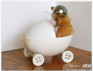 Super love eggshell