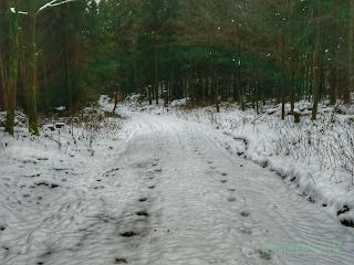 Weg im Winter mit Spuren im Schnee