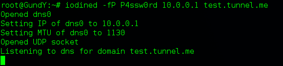 iodined -fP P4ssw0rd 10.0.0.1 test.tunnel.me