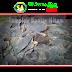 Batu Templek atau Batu Lempeng Hitam