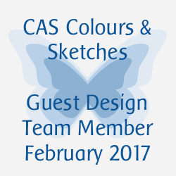 CAS Colours & Sketches Challenge February 2017 Guest Designer