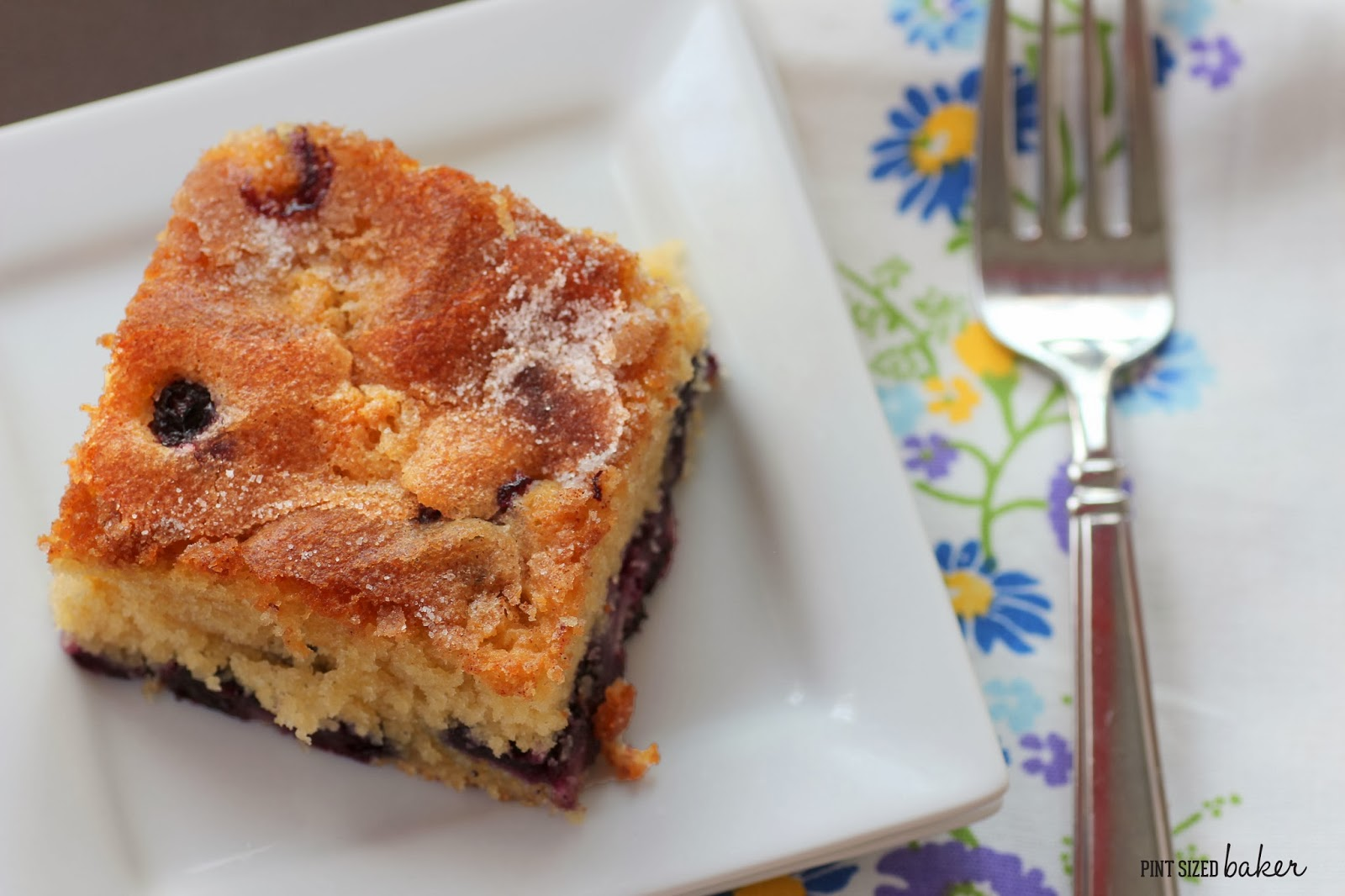 """... Blueberry Boy Bait"""" in the copy of America's Test Kitchen Best S..."""