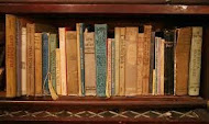 """Link to Kate Brauning's """"The Bookshelf"""""""