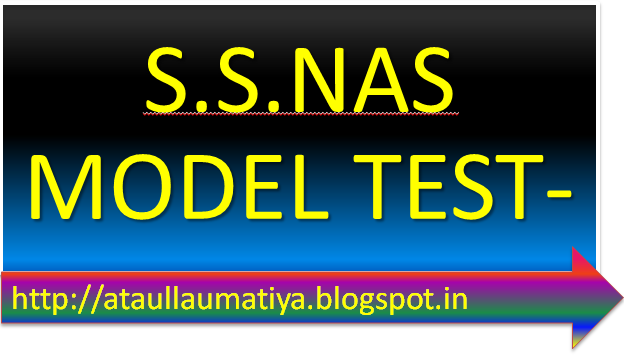 NAS MODEL TEST-PEPAR