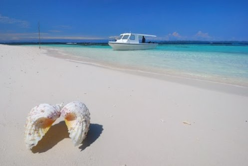 The one a great place in indonesia - Walea dive resort ...