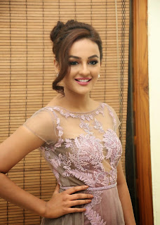 Actress Seerat Kapoor Pictures in Long Dress at Tiger Audio Launch 92