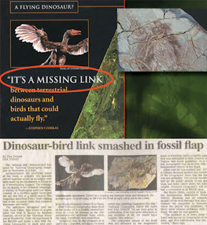 Dinosaur Hoax - Dinosaurs Never Existed! Dinosaur-bird