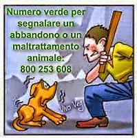 per chi vede maltrattamenti di animali c'è il numero verde,segnalate e salvateli