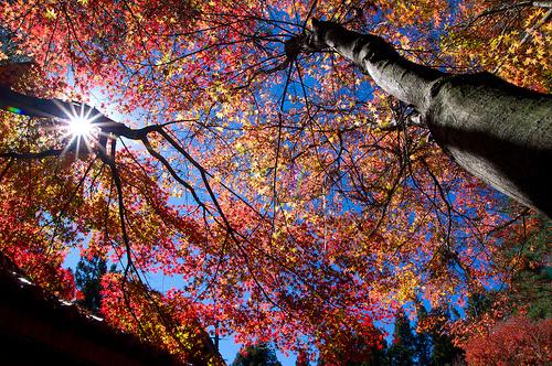 Autumn Across America7