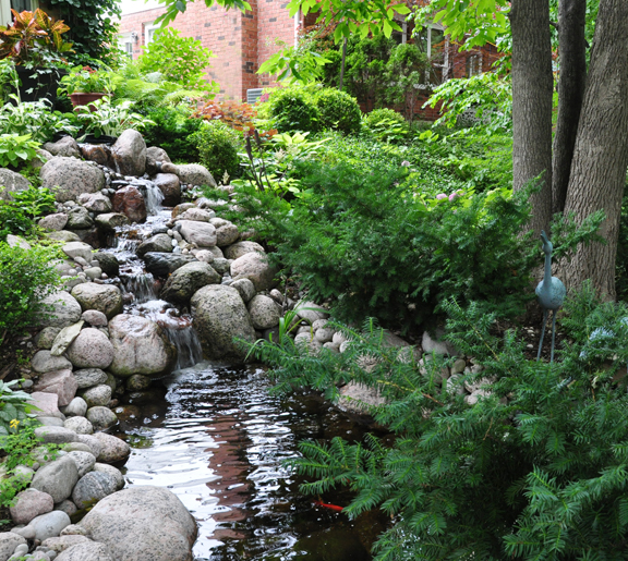 Backyard Hill Waterfall :  hillside and had Clearwater Ponds install a waterfall and small pond