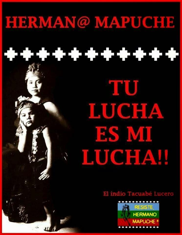pueblo mapuche en resistencia