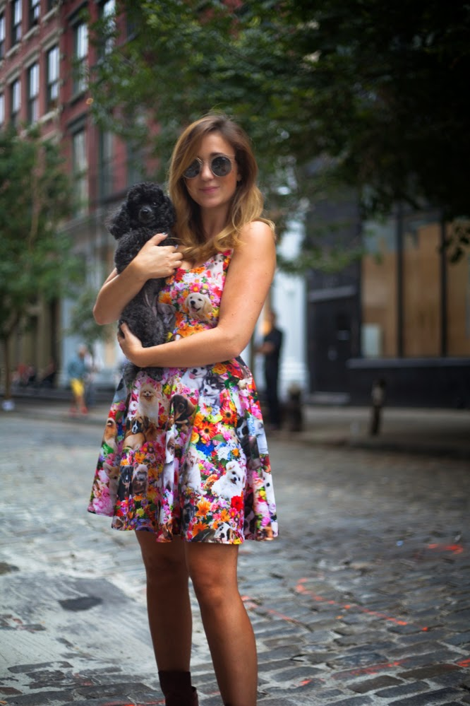 nylon, magazine, shop, quay, sunglasses, new york, style, blog, dc, pretty snake, puppy, dress