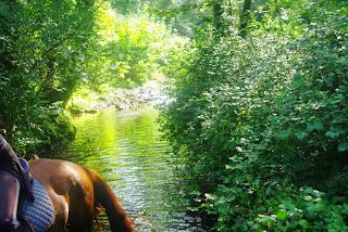 Cudillero, por el cauce del río Uncín