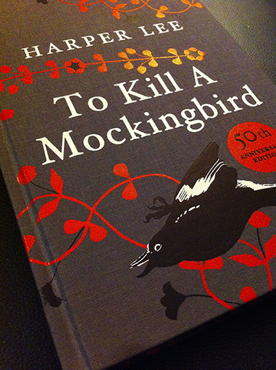 anger in to kill a mocking To kill a mockingbird to kill a mockingbird tells the story of maycomb county, alabama during the 1930s  jem tore up her camellia bushes in anger.