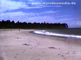 Beach Salvador da Bahia
