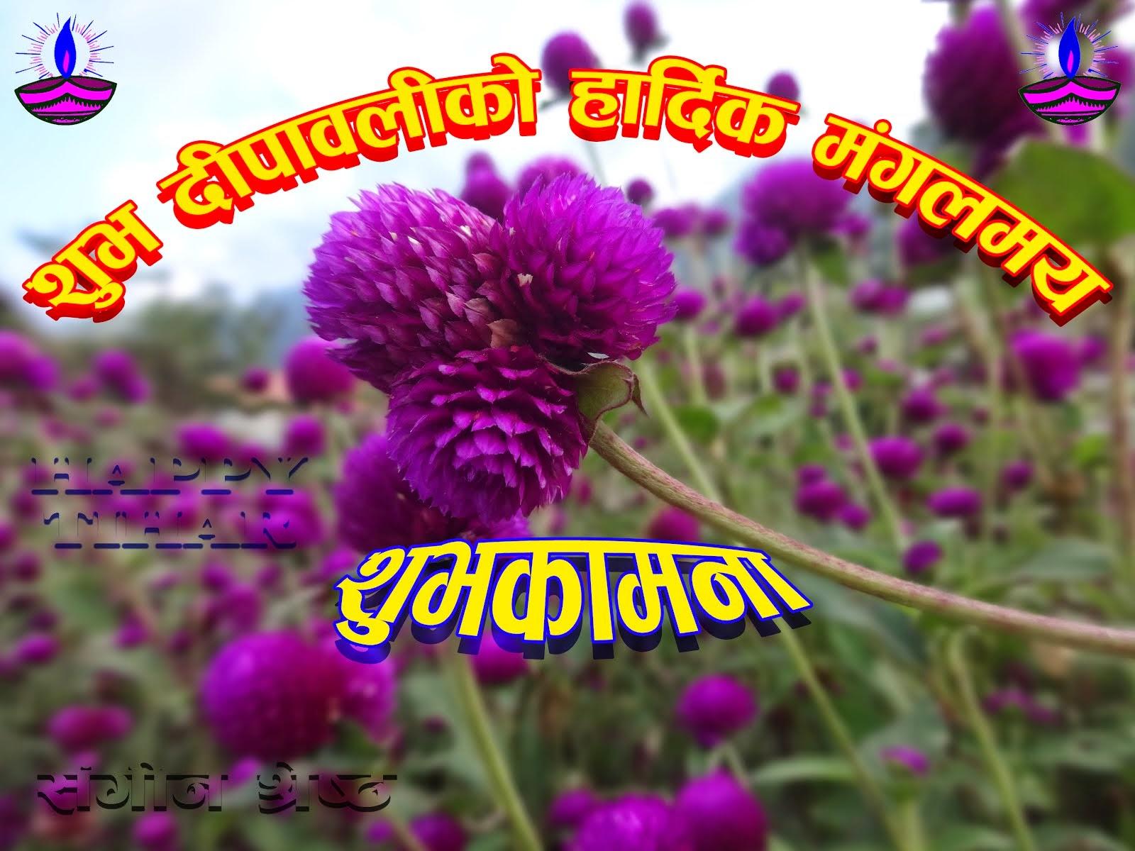 शुभ दीपावली, नेपाल सम्वत् ११३५ एवम् छठ पर्वको हार्दिक मंगलमय शुभकामना ।
