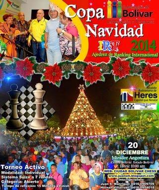 COPA NAVIDAD 2014