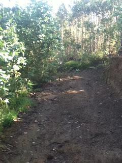 sul cammino del nord con Bici Brunello