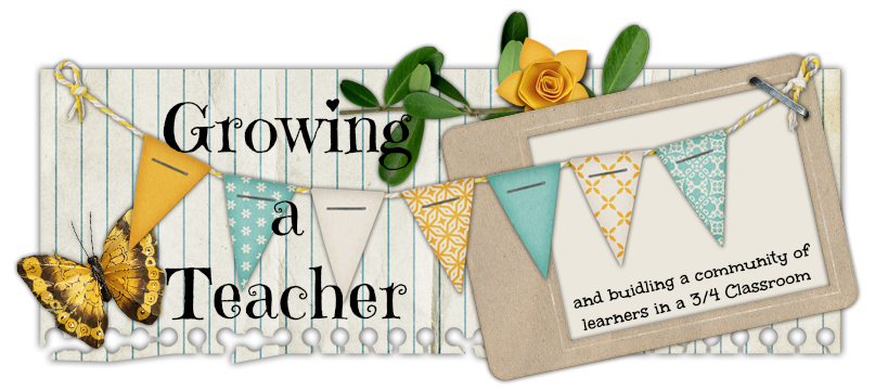 Growing a Teacher