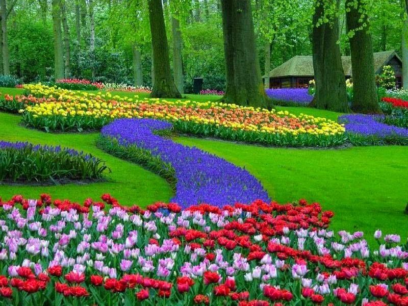 Cart es e mensagens jardins e flores wallpapers papel - Fotos de flores de jardin ...