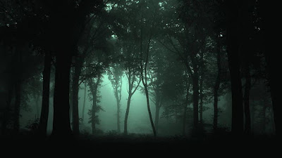 Сказочно-мистическая и подчас тревожная атмосфера сумеречного леса