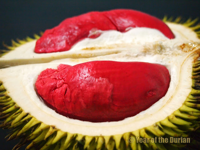 Tempoyak Durian Merah