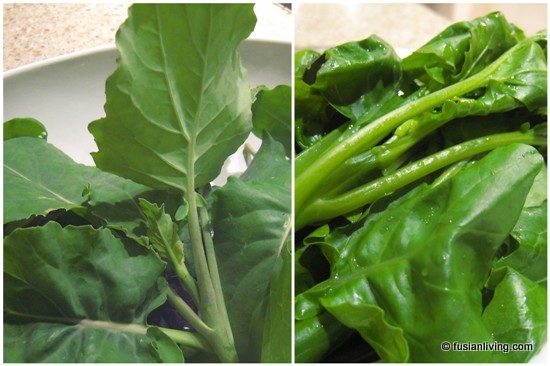 Harvest and Cook Kai Lan / Chinese Broccoli