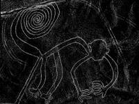 nazca lines - a monkey