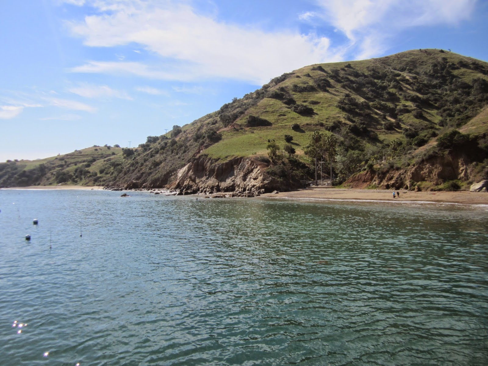 Romance under the moonlight camp emerald bay cub family for Catalina bay