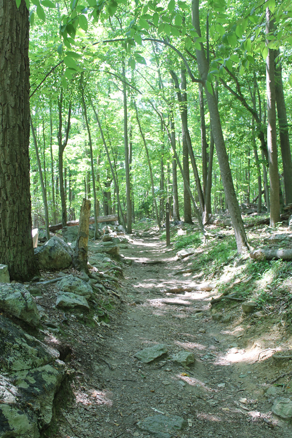 Sugarloaf Mountain, Maryland, Sugarloaf Mountain Maryland, outdoor hiking, outdoor recreation, trails, trail hiking