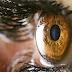 Πίεση στο μάτι: Συμπτώματα που δεν πρέπει να αγνοείτε