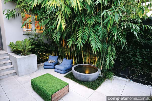 Designs For Small Gardens In Courtyards