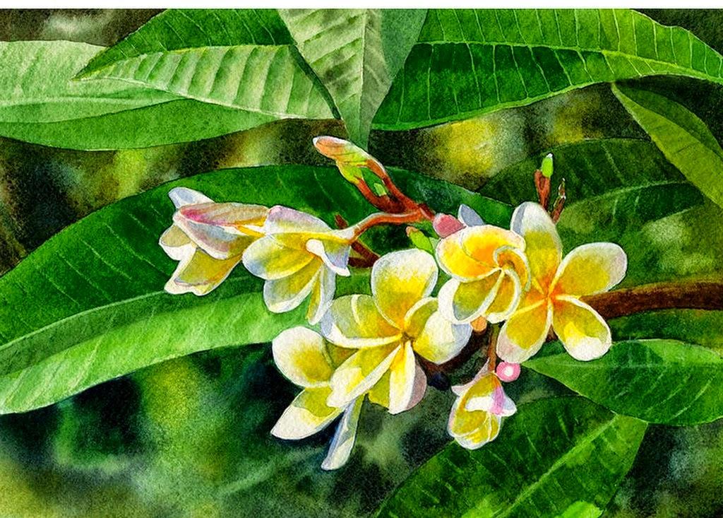 bodegones-con-diferentes-flores-acuarelas