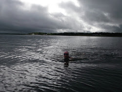 Training swim in the strait