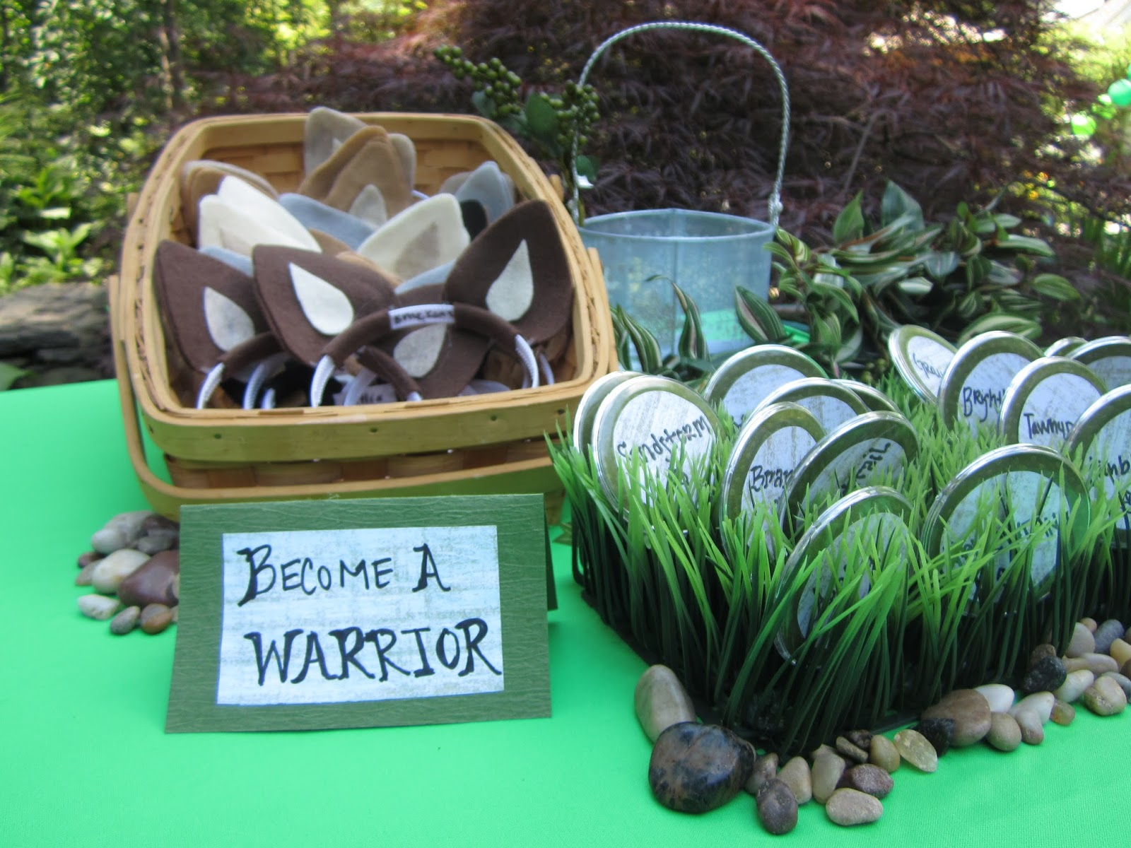 Warriors Cake Pop Ideas