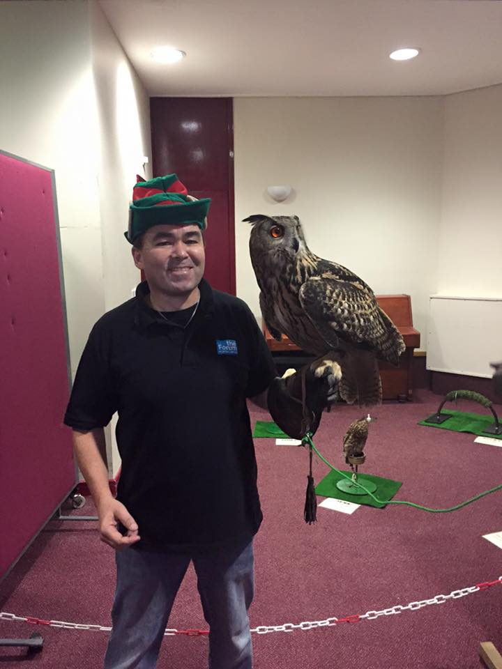 Come and see the Owls