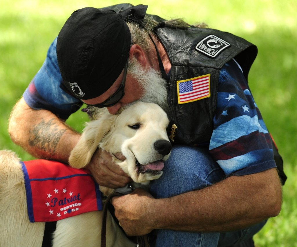 mental health service dogs