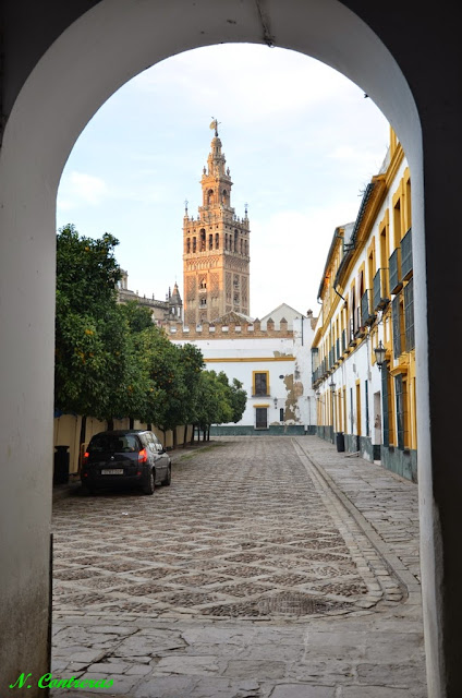 VEN a Sevilla | Come to Seville