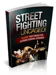 Street Figthing Uncaged