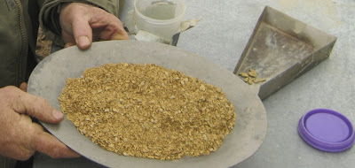 A good fifty ounce, 20 hr run of coarse nugget gold from Montana