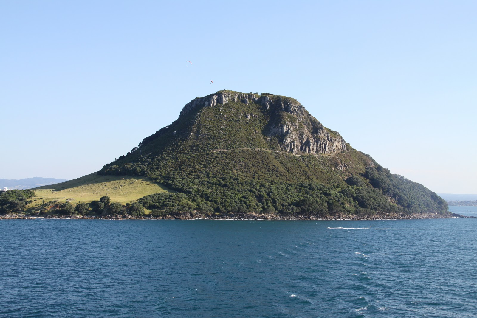 tauranga new zealand taken from the ship. Black Bedroom Furniture Sets. Home Design Ideas