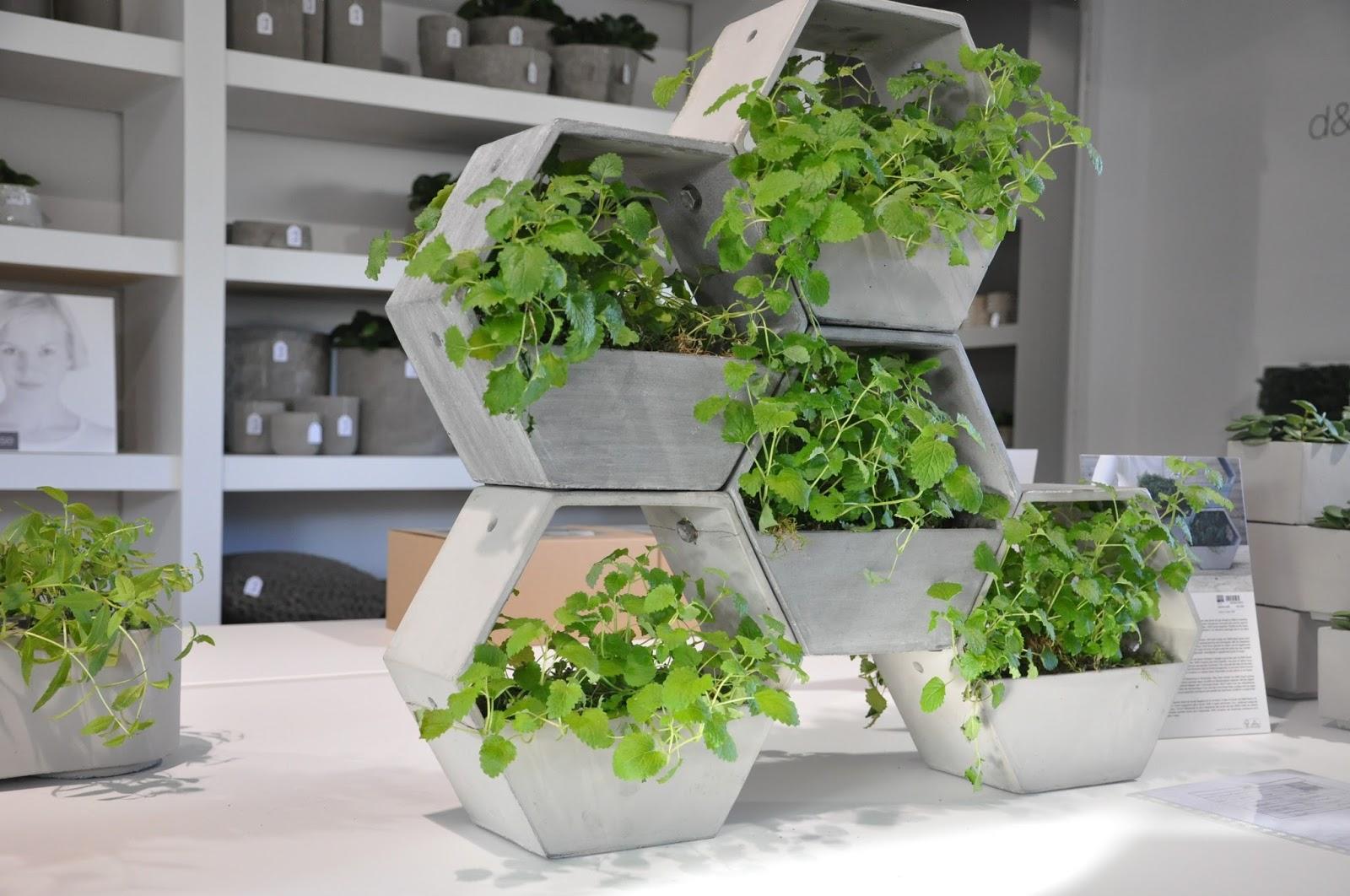 6 id es d co pour vos plantes vertes blog d co mydecolab - Petite plante de bureau ...