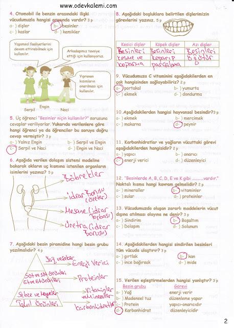 Sınıf fen ve teknoloji dersi 1 dönem 1 yazılı soruları ve