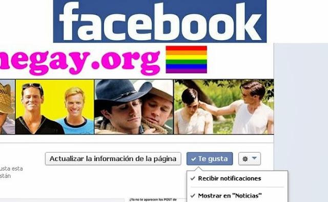 facebook cinegayorg